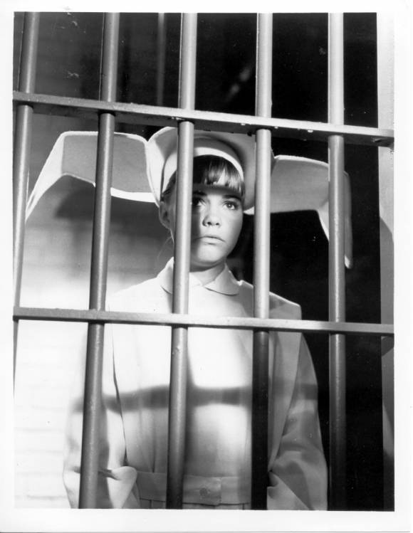flying_nun_ithe_days_of_nuns_and_rosesn_jail